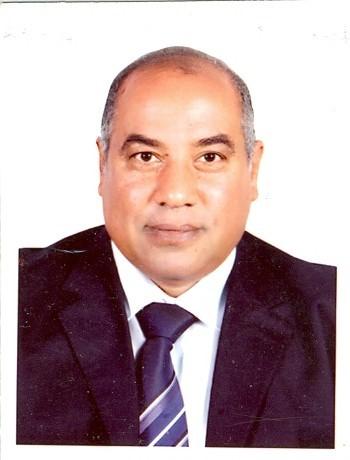 أ. د. جمال محمد كمال الدين